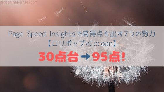 Page-Speed-Insights-hiht-socore